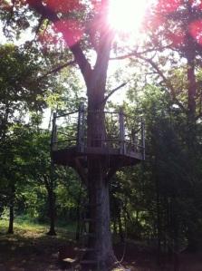 03272015 - Treehouse
