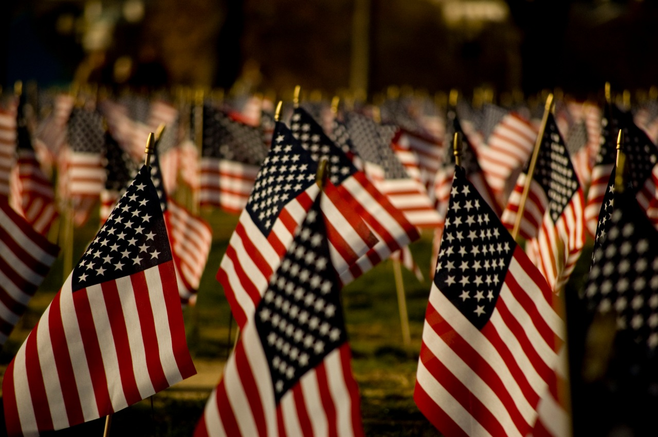 05302016 - Americanflags