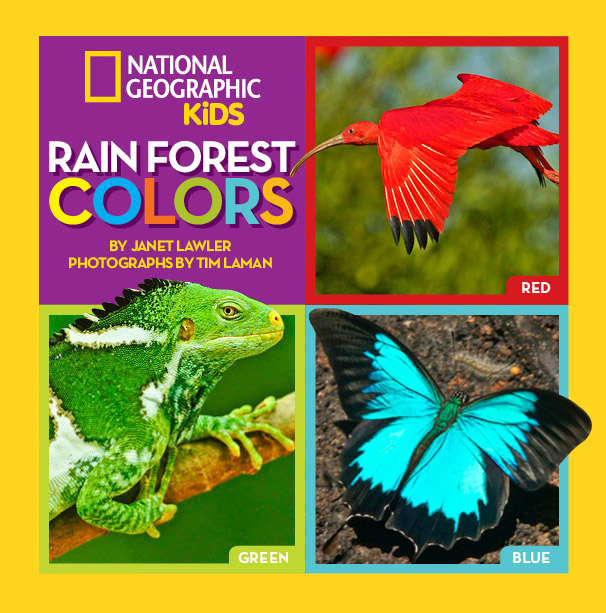 09092016-rainforestcolors_cover-2