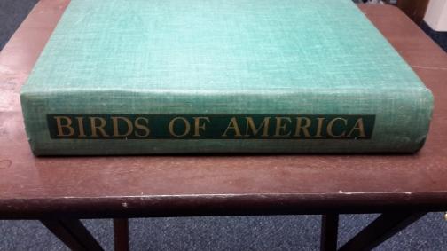 12032016-birds-america-spine