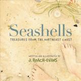 11262018 - Evans Seashells