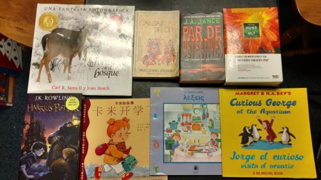 12082018 - multilingual books