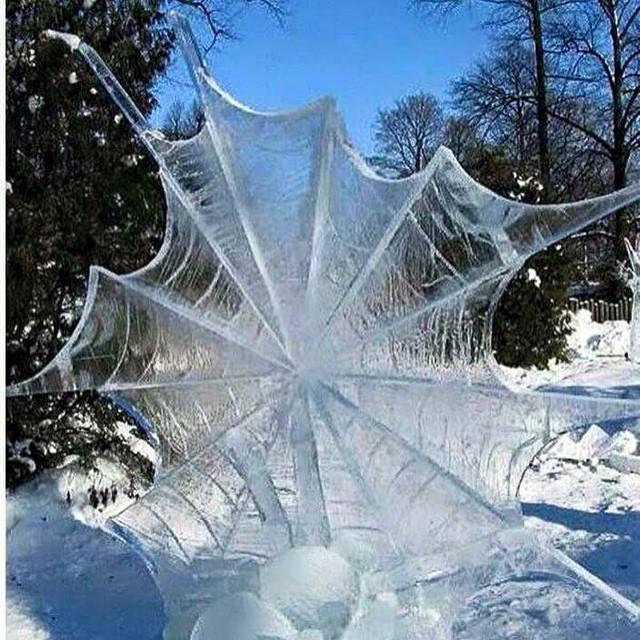 spiderfrost