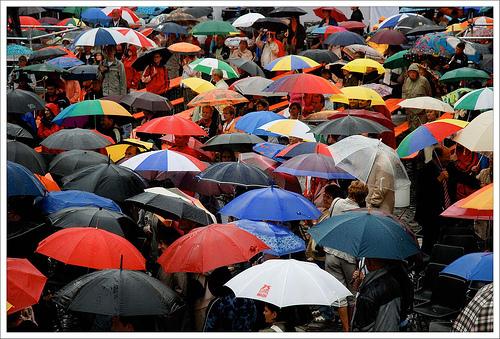 umbrellasintherain